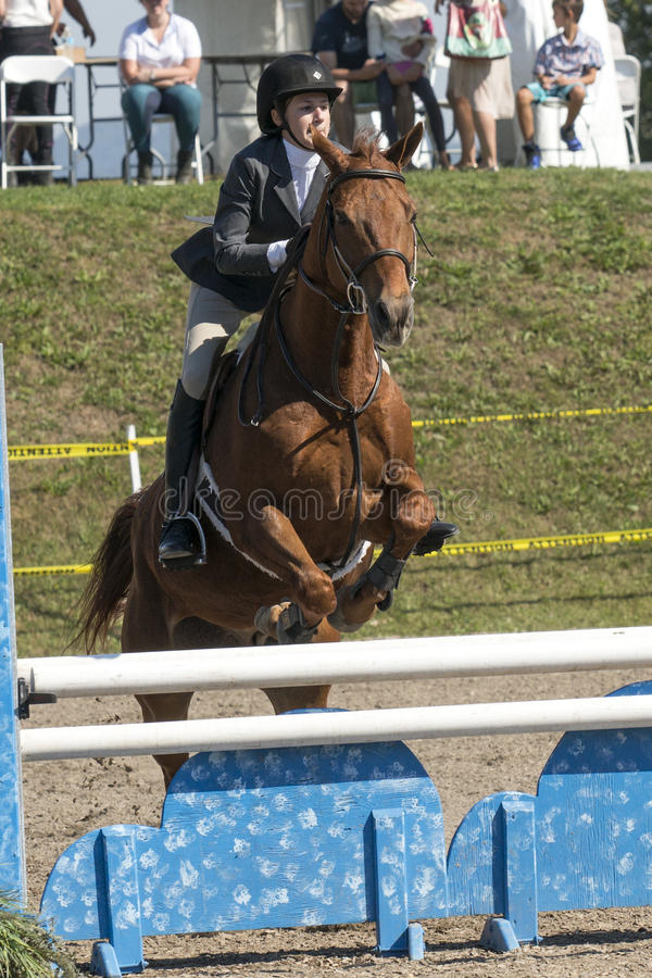 Equestrian show. Picture of rider and brown horse making a jump during competition at the bromont concours June 12, 2016 stock images