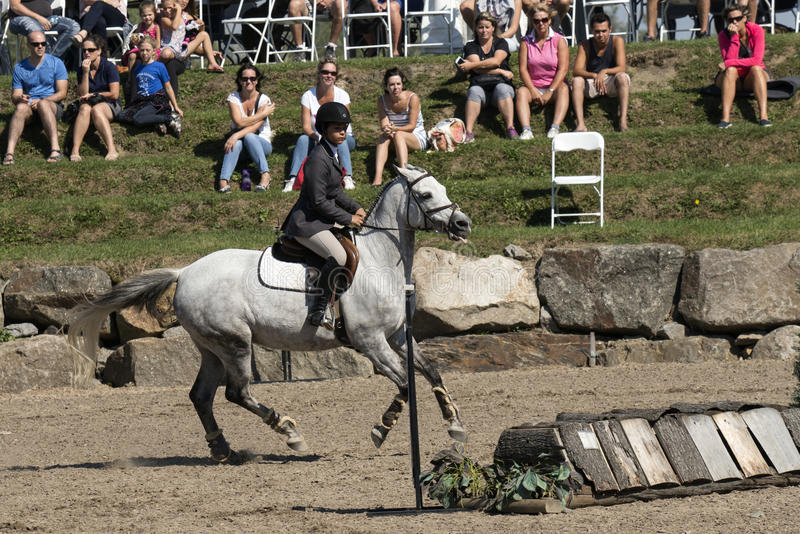 Equestrian show. Picture of rider and white horse riding during competition at the bromont concours June 12, 2016 stock images