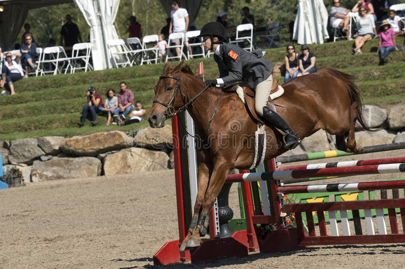 Equestrian show. Picture of young rider and brown horse completing a jump during competition at the bromont concours June 12, 2016 stock photos