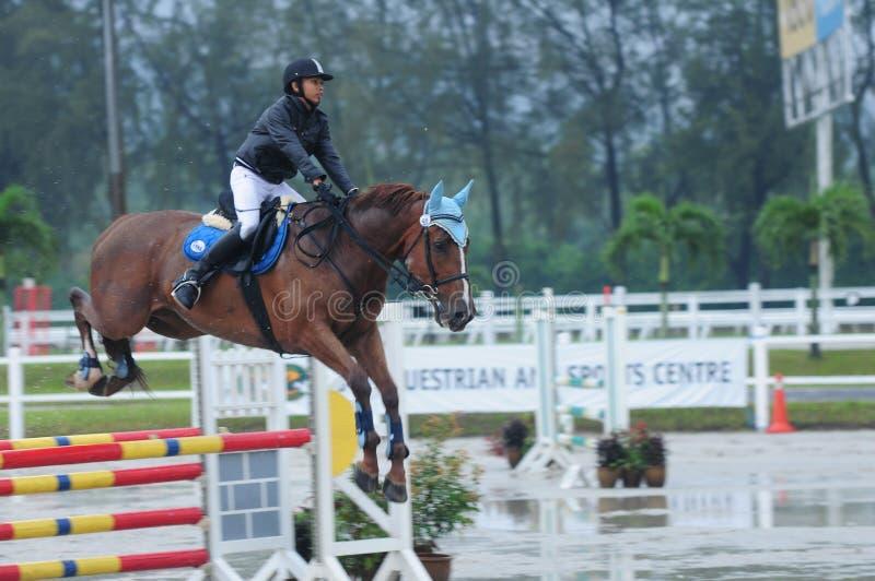 Equestrian showjumping - STC Koński przedstawienie 2013 zdjęcia stock