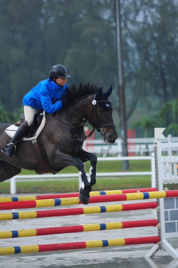 Equestrian showjumping - STC Koński przedstawienie 2013 obraz stock