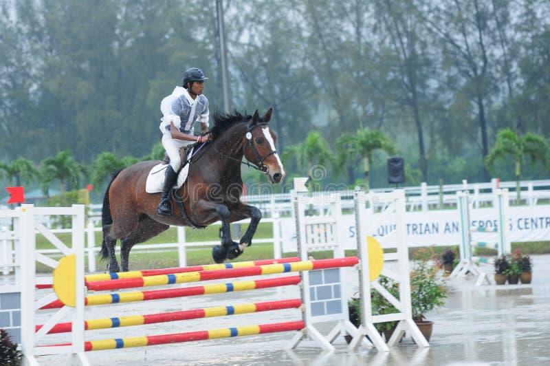 Equestrian showjumping - STC Koński przedstawienie 2013 zdjęcia royalty free