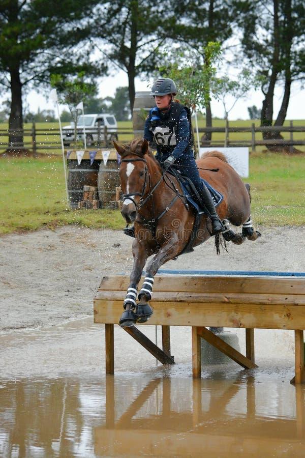 Equestrian sport - Eventing obrazy stock