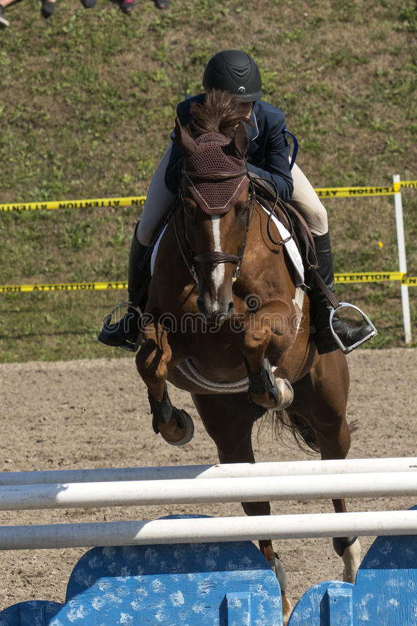 Equestrian sport. Front view of rider and brown horse making a jump during competition at the bromont concours June 12, 2016 stock photos