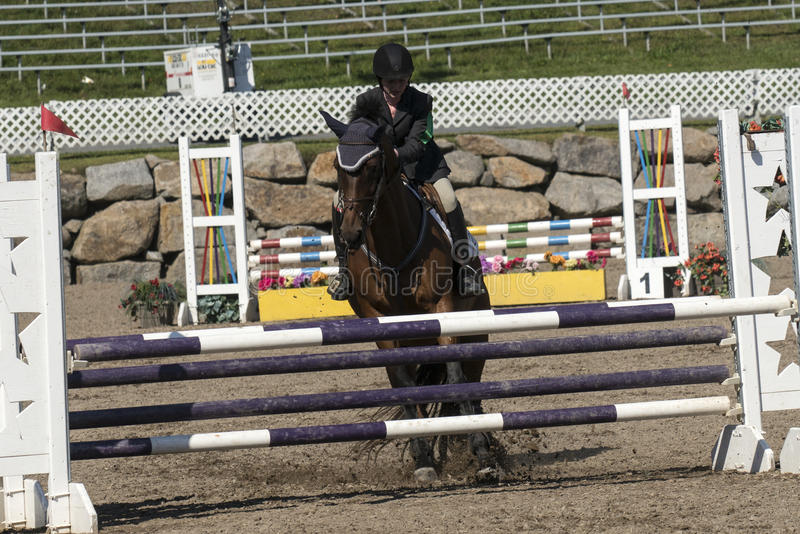 Equestrian sport. Front view of rider and brown horse stop at hurdle during competition at the bromont concours June 12, 2016 stock photo