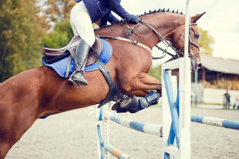 Equestrian sport image. Show jumping competition. Equestrian sport background. Young sportswoman taking her course on Show jumping competition. Warm color toned royalty free stock photography