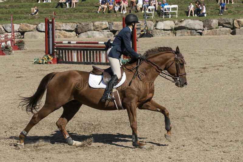Equestrian sport. Picture of rider and brown horse during training before competition at the bromont concours June 12, 2016 stock photos