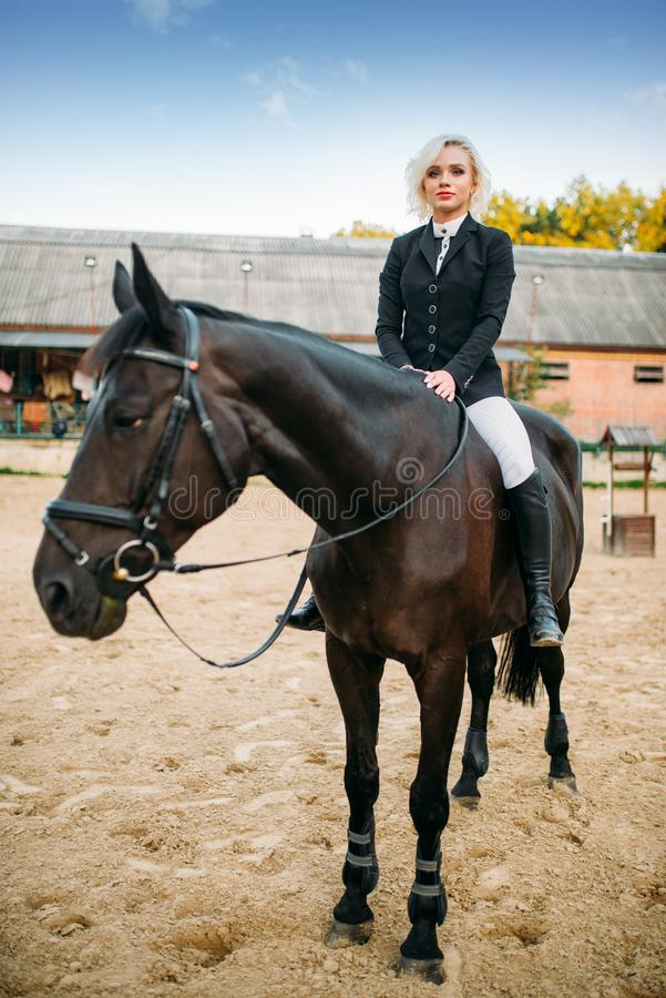 Equestrian sport, woman poses on horseback royalty free stock photos