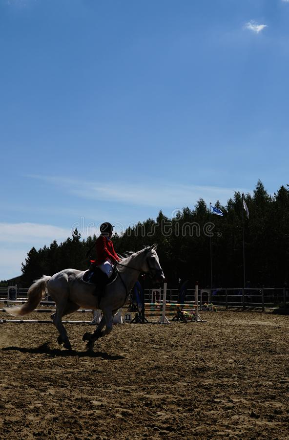 Equestrian sport - a young girl is riding a horse. Sport royalty free stock image