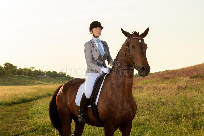 Equestrian sport. Young woman riding horse on dressage advanced test. Horse walk in summer stock image