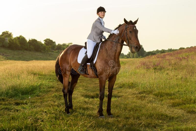 Equestrian sport. Young woman riding horse on dressage advanced test. Horse walk in summer royalty free stock photo