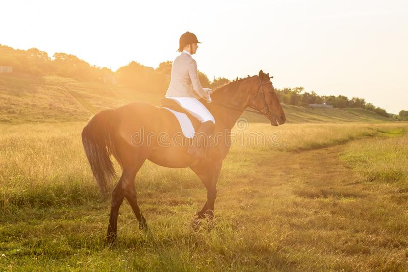 Equestrian sport. Young woman riding horse on dressage advanced test. Sun flare. Equestrian sport. Young woman riding horse on dressage advanced test. Horse walk royalty free stock images