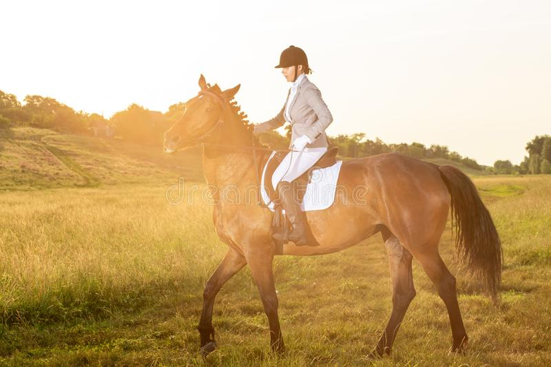 Equestrian sport. Young woman riding horse on dressage advanced test. Sun flare. Equestrian sport. Young woman riding horse on dressage advanced test. Horse walk royalty free stock photo