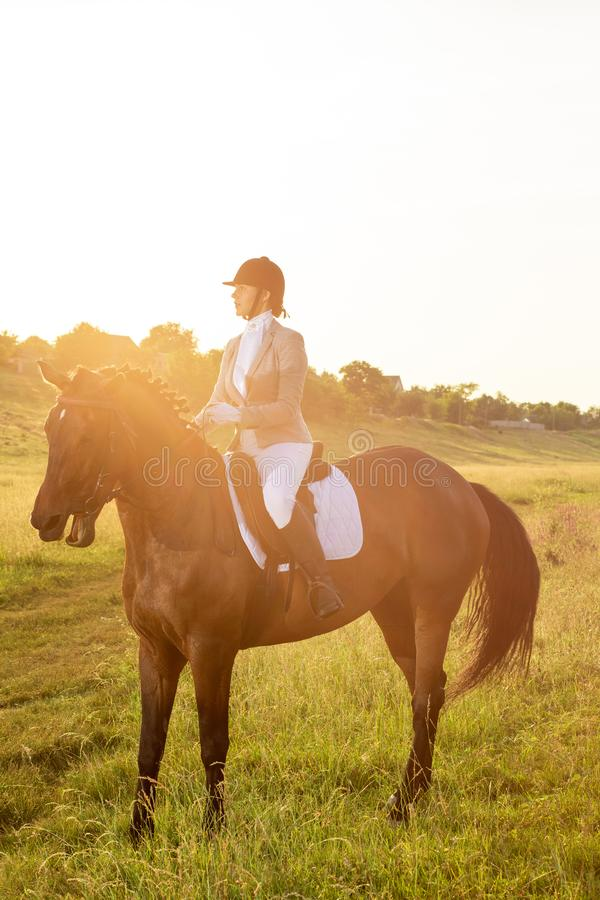 Equestrian sport. Young woman riding horse on dressage advanced test. Sun flare. Equestrian sport. Young woman riding horse on dressage advanced test. Horse walk stock photo