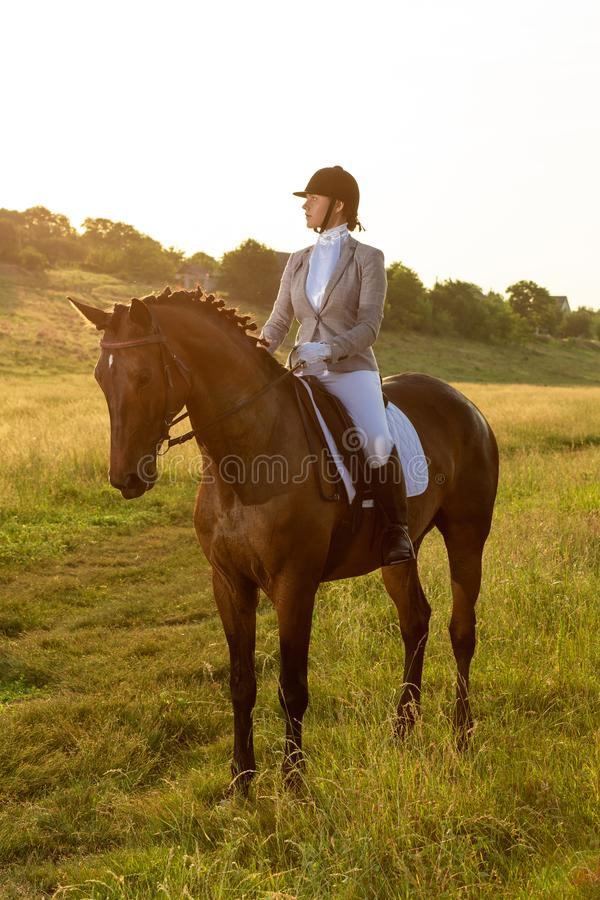 Equestrian sport. Young woman riding horse on dressage advanced test. Horse walk in summer stock photo