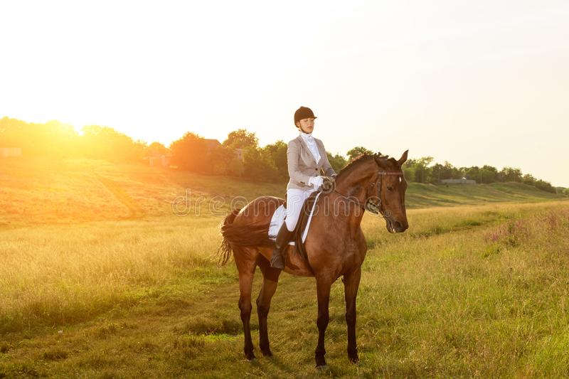 Equestrian sport. Young woman riding horse on dressage advanced test. Horse walk in summer stock photos