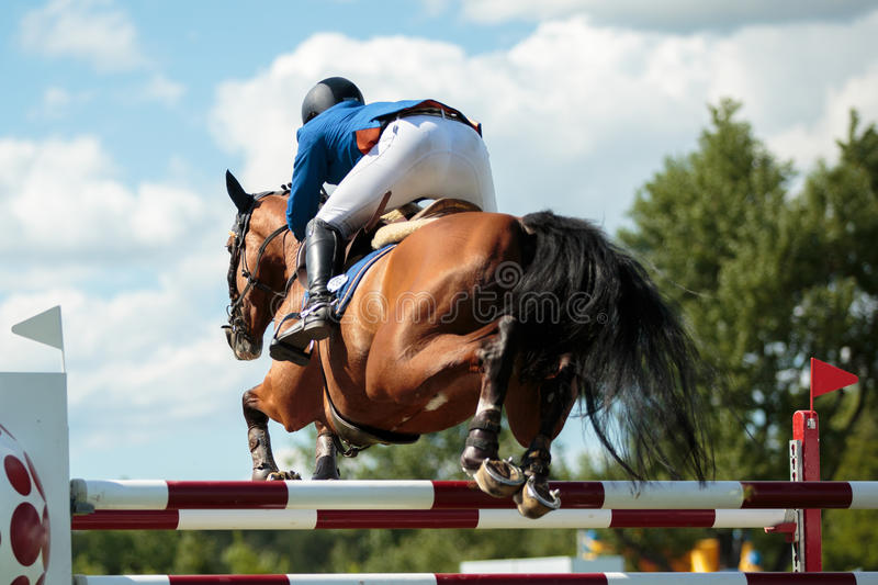 Equestrian SPorts. Horse jumping competition royalty free stock image