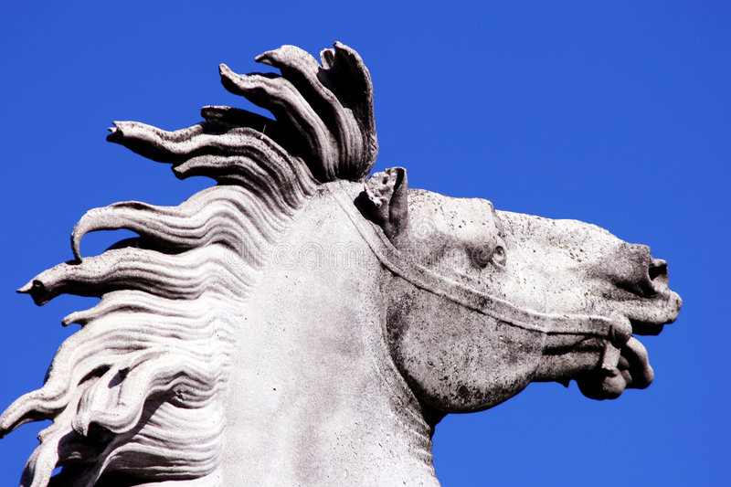 Equestrian statue stock images