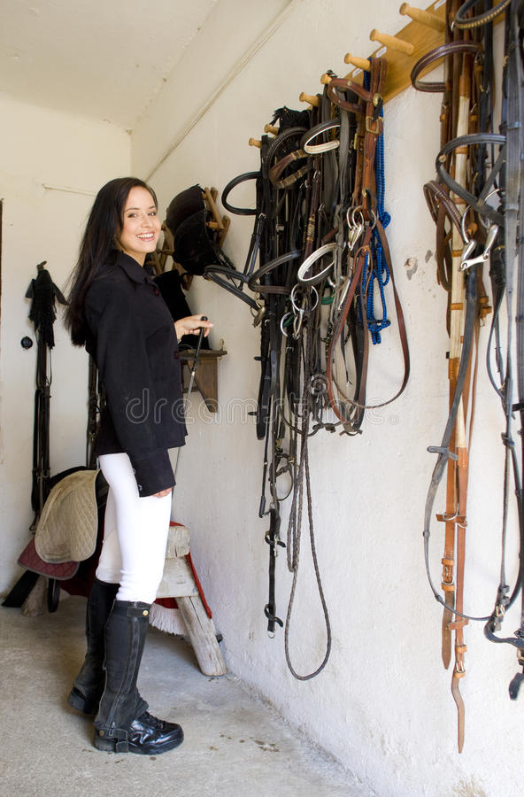 Equestrian in una scuderia fotografie stock