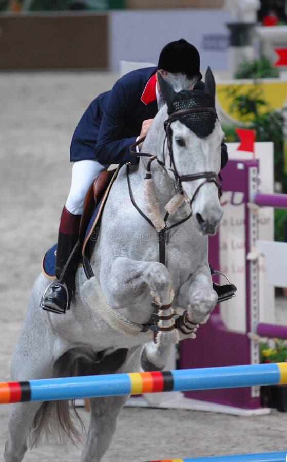 Equestrian v royalty free stock photo