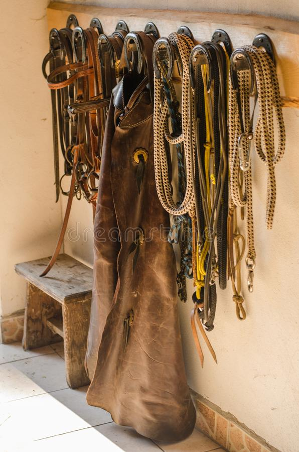 Equestrian western trousers, lasso, bridle, leash. stock photos