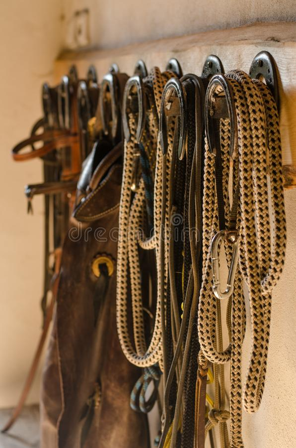 Equestrian western trousers lasso, bridle, leash. royalty free stock photography