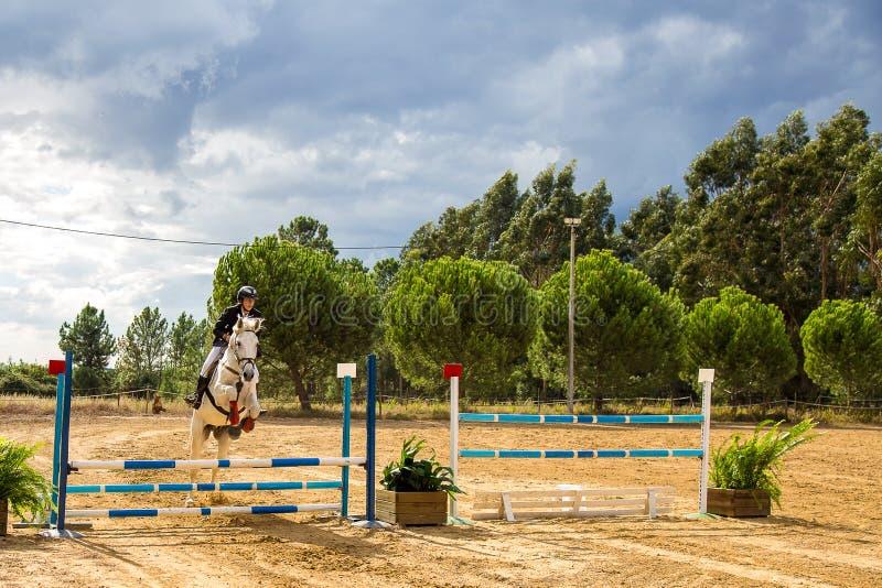 Equestrianism i en portugisisk naturhästreserv fotografering för bildbyråer