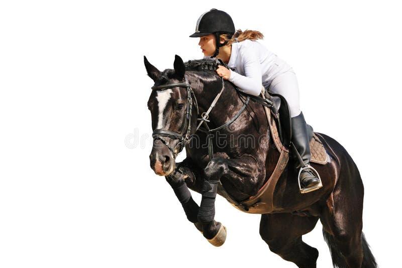 Equestrianism: Ung flicka i banhoppningshow royaltyfri foto