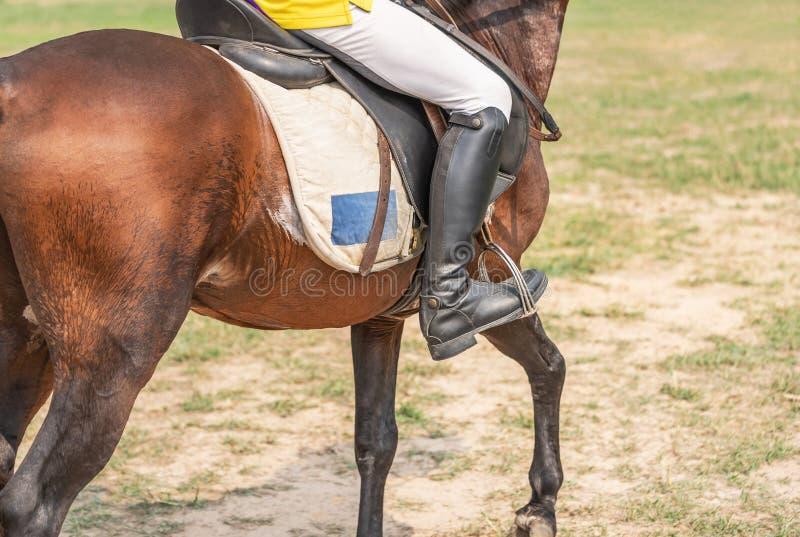 Equestrians во время разминок нагревают для подготовки конкуренции в ипподроме стоковое фото