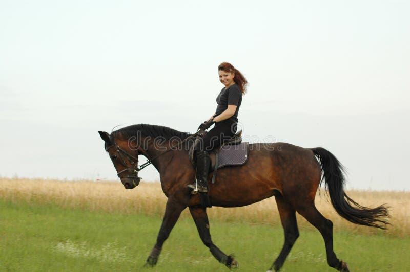 equestrienne fotografia royalty free