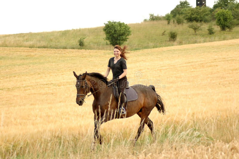 Equestrienne. royalty free stock photo