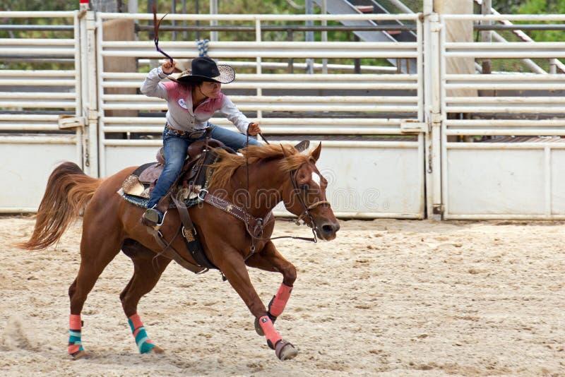 equestrienne obrazy stock
