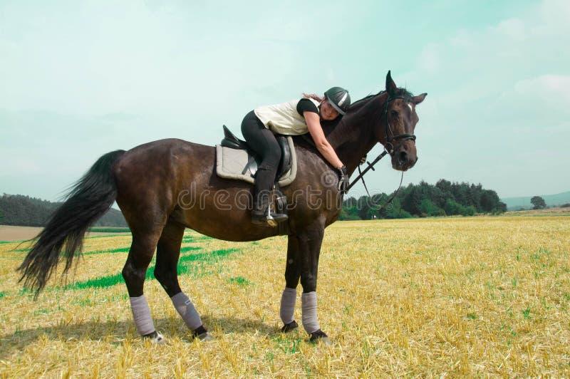 Equestrienne i koń. zdjęcie stock
