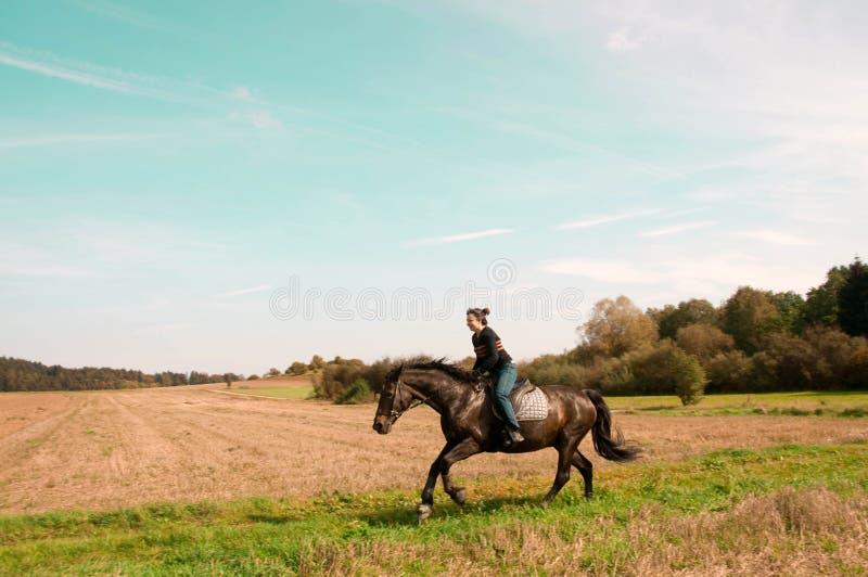 Equestrienne ritter på backen. royaltyfri fotografi