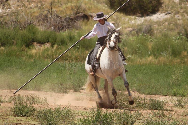 Equine Demonstration Las Golondrinas Summer Fest. royalty free stock photos