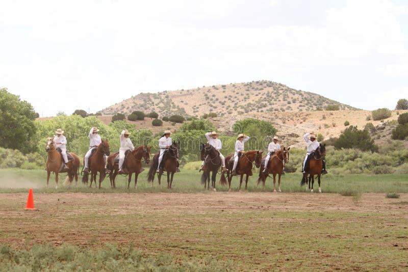 Equine Demonstration Las Golondrinas Summer Fest. royalty free stock photography