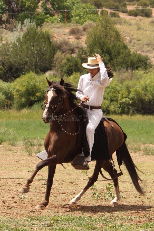 Equine Demonstration Las Golondrinas Summer Fest. stock photo