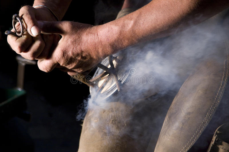 Download Equine farrier stock image. Image of chaps, tools, farm - 22330967