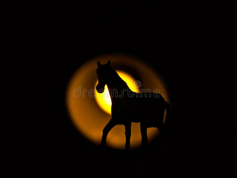 Equine silhouette stock photography