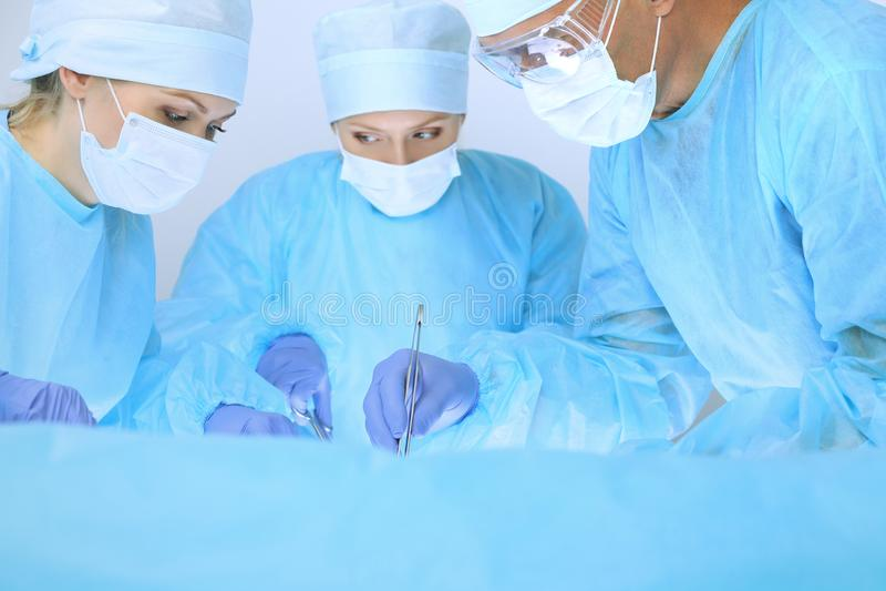 Equipa médica que executa a operação Três dos cirurgiões no trabalho são ocupados do paciente Medicina, veterinário ou cuidados m imagem de stock