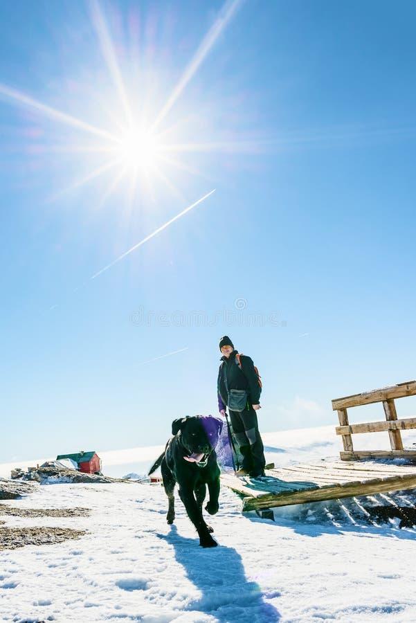 Equipaggi ed il suo cane nelle montagne nevose fotografia stock libera da diritti