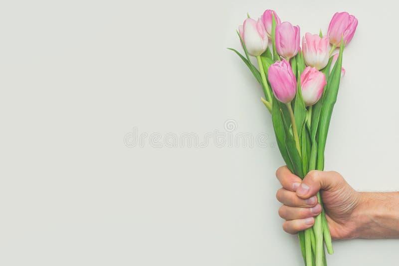 Equipaggi il mazzo della tenuta della mano del ` s dei tulipani rosa della prima molla su fondo bianco con lo spazio della copia fotografia stock
