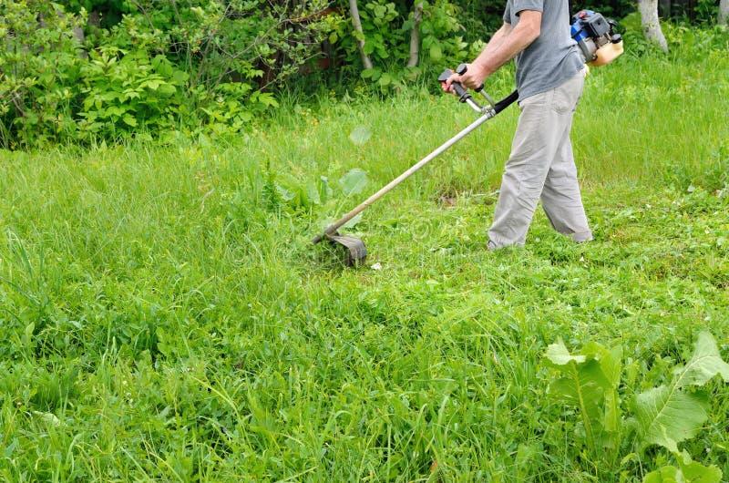 Equipaggi il verde di falciatura della falciatrice da giardino, giovane erba Giardiniere che fa lavoro stagionale Rimozione il gi fotografia stock libera da diritti