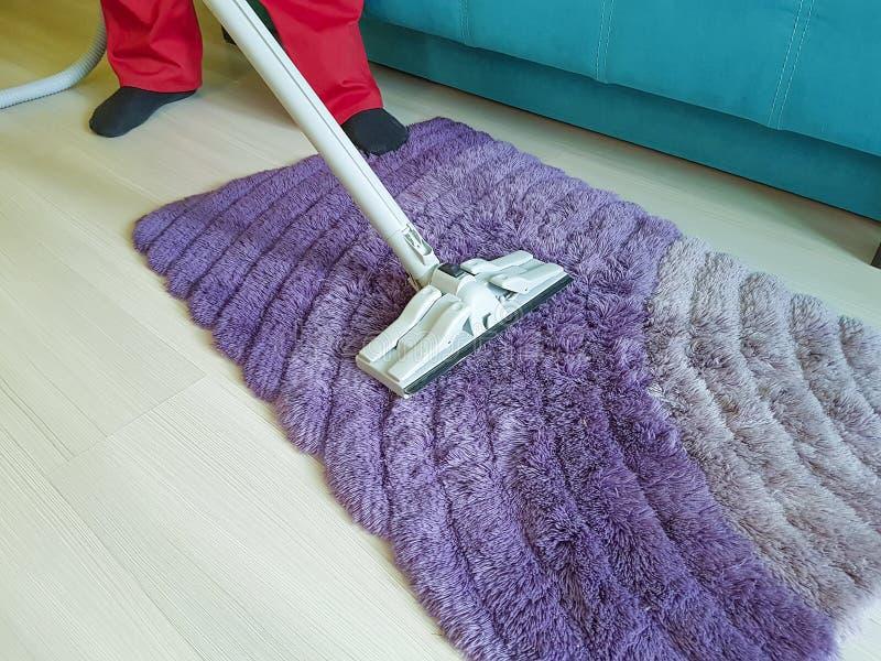 Equipaggi l'aspirazione il tappeto nel professionista della tenuta di casa della stanza immagini stock
