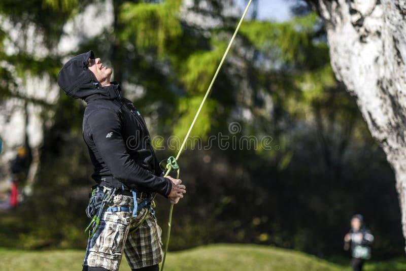 Equipaggi l'atto del legare una corda durante la scalata del suo partner, czestochowska di krakowsko di Giura immagine stock