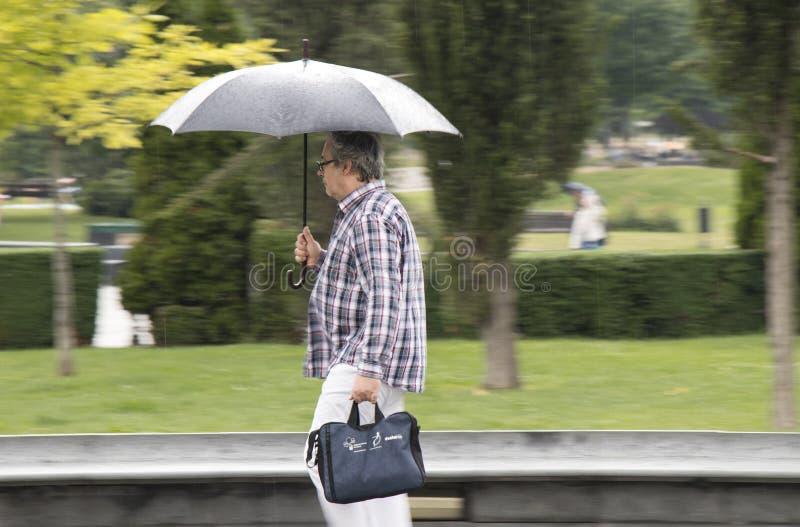 Equipaggi la camminata sotto l'ombrello un giorno di molla piovoso immagini stock