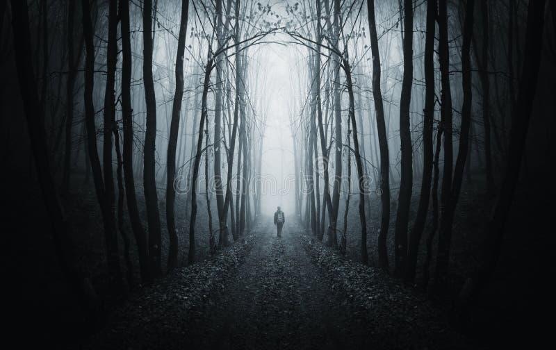 Equipaggi la camminata su un percorso scuro in una foresta scura sconosciuta con nebbia fotografie stock libere da diritti