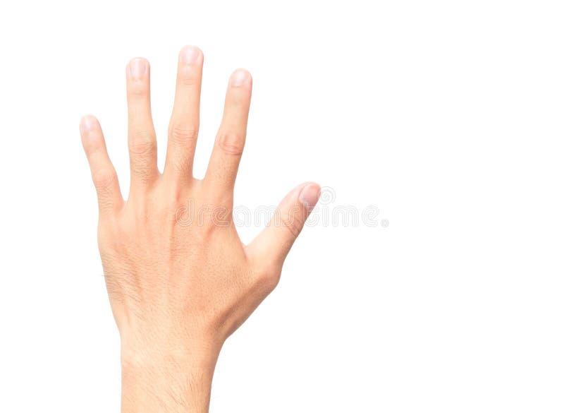 Equipaggi la mostra del conteggio dita di cinque e della mano posteriore su fondo bianco immagine stock