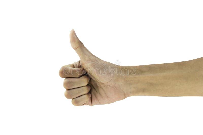 Equipaggi la mostra del pollice di gesto di mano su buona, come, giusto, acconsenta, successo fotografie stock libere da diritti