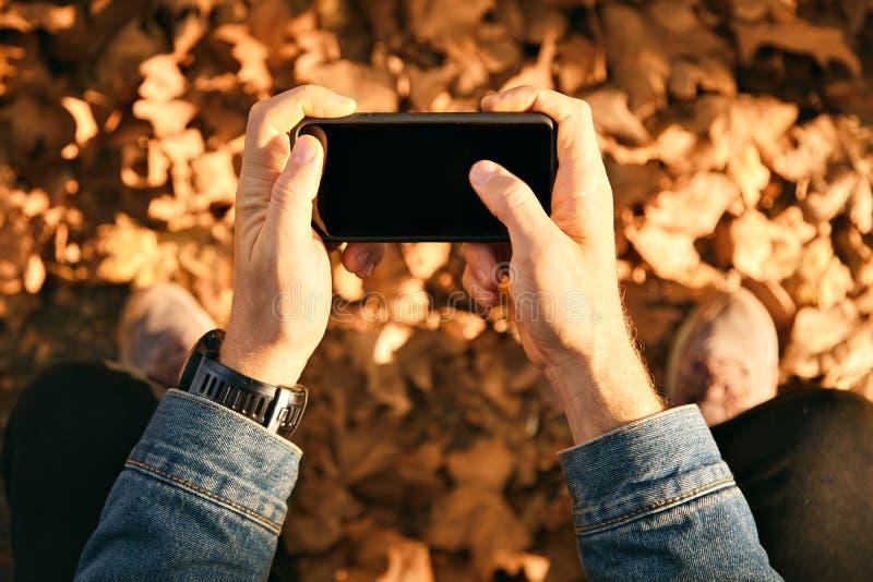 Equipaggi la presa dell'immagine delle foglie di autunno con lo smartphone fotografie stock libere da diritti